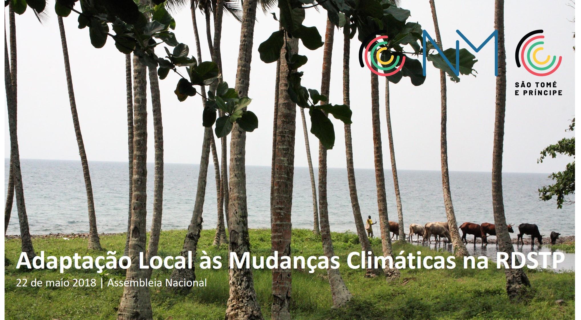"""SEMINÁRIO NACIONAL """"ADAPTAÇÃO LOCAL ÀS MUDANÇAS CLIMÁTICAS NA RDSTP"""""""